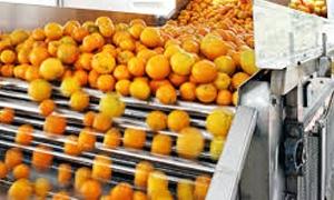 450 ألف طن عصيري الطاقة الانتاجية...وزير الصناعة:إقامة معمل للعصائر الطبيعية يتطلب التحقق من الجدوى الاقتصادية لتنفيذه