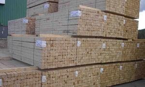 وزارة الاقتصاد تمدد منع تصدير الأخشاب والأحطاب حتى نهاية عام 2014