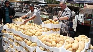 أسعار الخضر والفواكه تعاود الأرتفاع في أسواق السويداء.. البطاطا بـ175 ليرة
