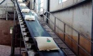 مؤسسة السكرتحول 680 مليون ليرة قيمة محصول الشوندر السكري