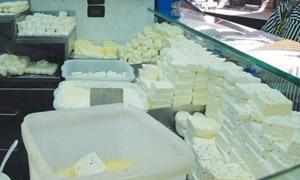 السواح: سورية خسرت 80% من صناعة الألبان والأجبان..وأكثر من 95% نسبة إشغال أقبية ومستودعات دمشق