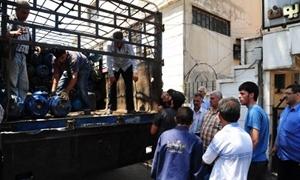 إستهلاكية ريف دمشق توزع