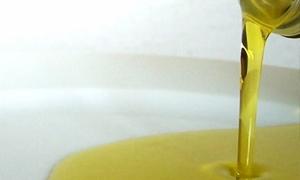 بقيمة 276 مليون ليرة..تصدير أكثر من 5300 طناً من زيت الزيتون في اللاذقية