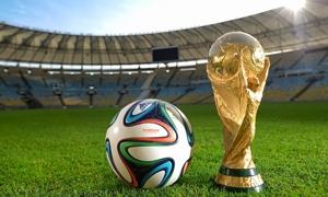 ارباح خزينة البرازيل في كأس العالم