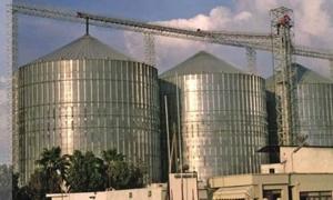 تأسيس أكبر مطحنة في الشرق الأوسط في سورية بطاقة إنتاجية نصف مليون طن سنوياً