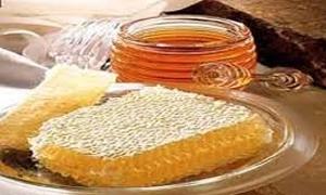 160 طناً إنتاج العسل في حماة بنسبة انخفاض 75%