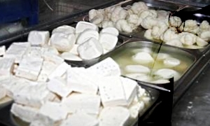 تقرير : إرتفاع أسعار الحليب ومشتقاته 250% وكيلو اللبن بـ60 والجبنة بـ300 ليرة