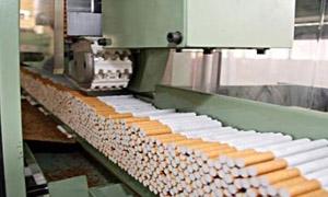 318 طنا إنتاج معمل سجائر حماة خلال 8 أشهر