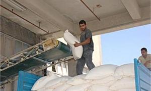 سكر حمص توقع عقدا لتصنيع 10 آلاف طن بذور قطن