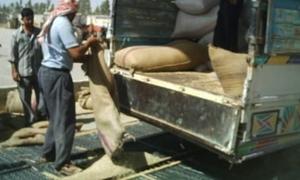 التجارة الداخلية تقترح صرف قيمة محصول الحبوب للفلاحين من جميع مصارف سورية.. والزراعة تبين  اسباب النقص المتوقع