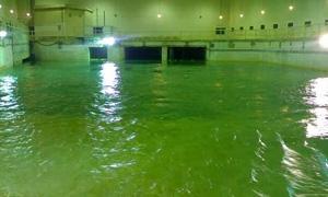 منسوب المياه في نبع الفيجة ثلاث أضعاف العام الماضي..حريدين:  تحسن ملموس في المياه ابتداءً من اليوم في دمشق وريفها