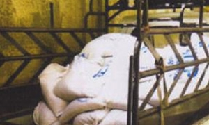 مصادرة مرتديلا مخالفة وطحين مهرب وتنظيم 11 ضبطاً في يوم واحد