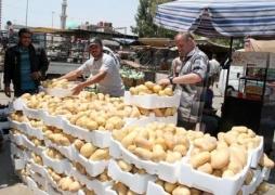 الخيار يسجل رقماً قياسياً في أسواقنا..والبطاطا بـ190 ليرة..الخضار والفواكه تصاب بجنون الأسعار