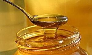 تأثر قطاع النحل وتراجع إنتاج العسل في سورية