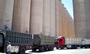 مؤسسة الحبوب:1.8 مليون طن كمية القمح المخزنة في الصوامع