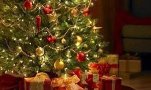 فرحة عيد الميلاد