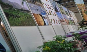 دعوة لإقامة مركز سوري متخصص بالمنتجات الزراعية وغير الزراعية في العراق