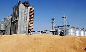 انخفاض الطاقة التخزينية لصوامع الحبوب في سورية إلى 1.6 مليون طن..ودراسة لإنشاء صومعتين جديدتين