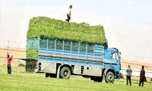 النقل: 233 ألف سيارة زراعية وتجارية وصناعية في سورية العام الماضي..وإجراءات لضبط تراخيص السيارة الوهمية