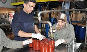 وزارة الصناعة تطلب تشديد الرقابة على إنتاج المنشآت الغذائية وخاصة لمادة رب البندورة