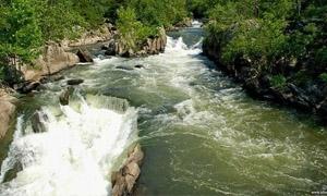 الشيخة للمعنيين بمؤسسة «الفيجة»: تأمين المياه ومراقبتها ومحاسبة الفاسدين