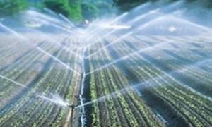 الزراعة: 9588 مستفيدا من صندوق تمويل المشروع الوطني للتحول للري الحديث