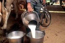 جمعية حماية المستهلك بدمشق: مواطنون يشتكون عن فساد الحليب