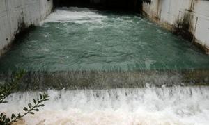 الشيخة: إرتفاع نسبة عكارة مياه دمشق عابر ولا يؤثر على الصحة