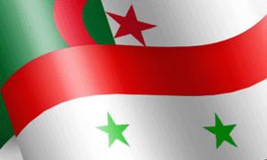 سورية والجزائر تبحثان إعادة تشكيل مجلس رجال أعمال مشترك وتعزيز العمل التجاري
