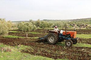 دراسة: تسعة أسباب لتردي الزراعة في سورية .. و 14 مقترحاً لدعمها ؟
