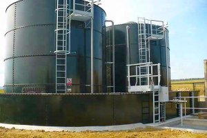 شركة سورية تبدأ بتنفيذ أول محطة لإنتاج الغاز من روث الأبقار