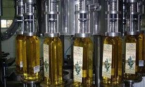 ارتفاع تكلفة إنتاج زيت الزيتون في سورية من 75 ليرة للكيلو قبل الأزمة إلى 350 ليرة..و48 مليار ليرة إجمالي الدخل السنوي
