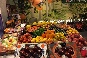 مسؤول يطالب بإنشاء مؤسسة عملاقة من القطاع الخاص للتسويق المنتجات الزراعية  السورية داخلياً وخارجياً