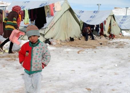 70 بالمئة من النازحين السوريين في لبنان يعيشون بـ 3 دولارات يوميا